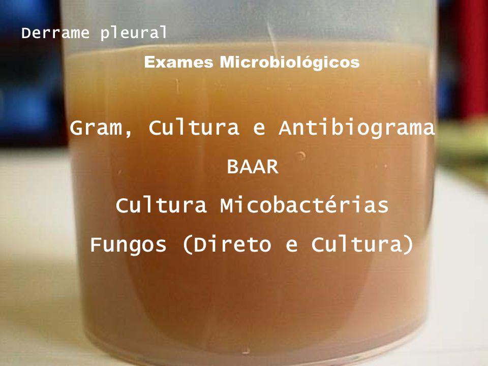 Gram, Cultura e Antibiograma BAAR Cultura Micobactérias