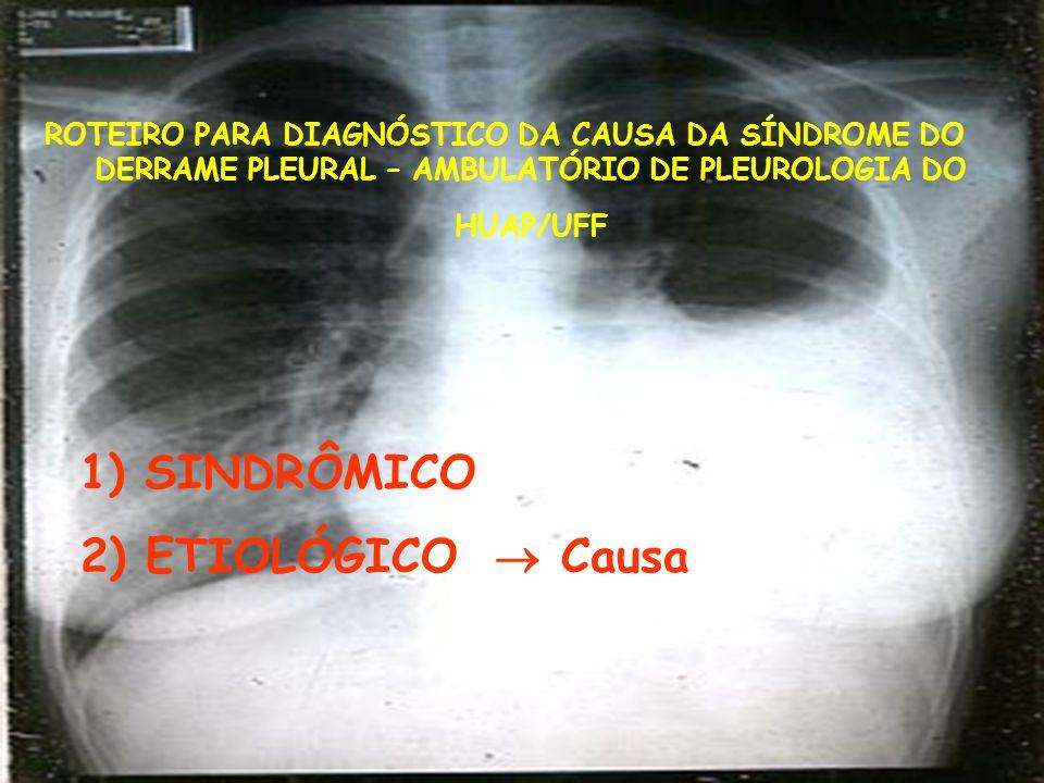 1) SINDRÔMICO 2) ETIOLÓGICO  Causa