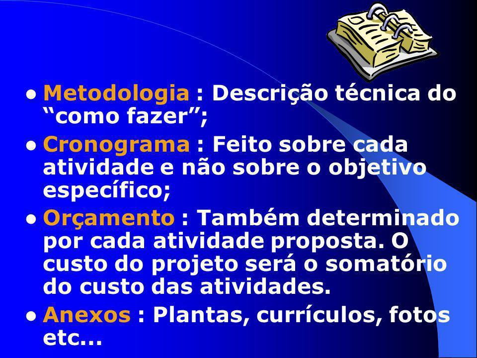 Metodologia : Descrição técnica do como fazer ;