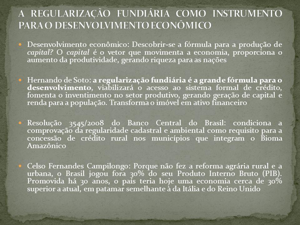 A REGULARIZAÇÃO FUNDIÁRIA COMO INSTRUMENTO PARA O DESENVOLVIMENTO ECONÔMICO
