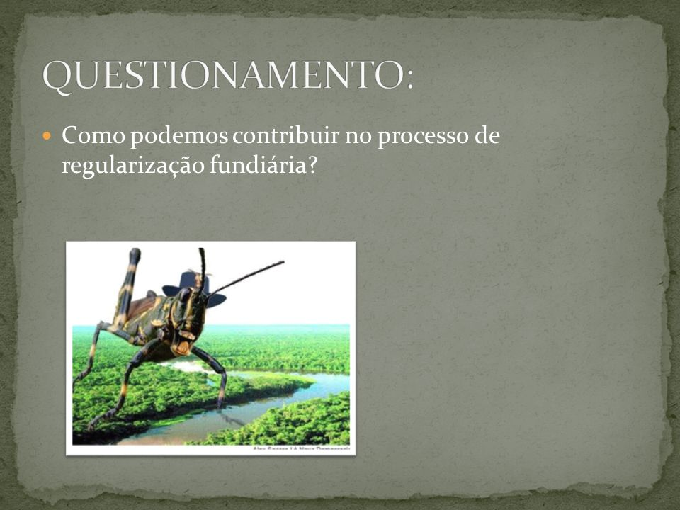 QUESTIONAMENTO: Como podemos contribuir no processo de regularização fundiária