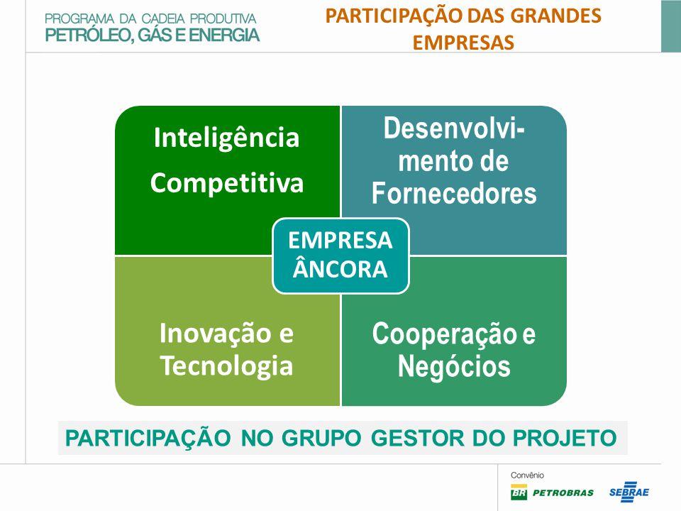 PARTICIPAÇÃO DAS GRANDES EMPRESAS Desenvolvi-mento de Fornecedores