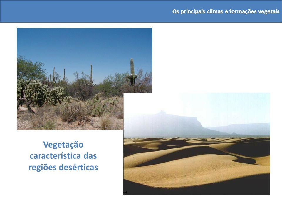 Vegetação característica das regiões desérticas