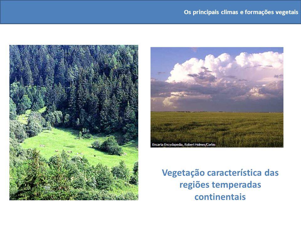 Vegetação característica das regiões temperadas continentais