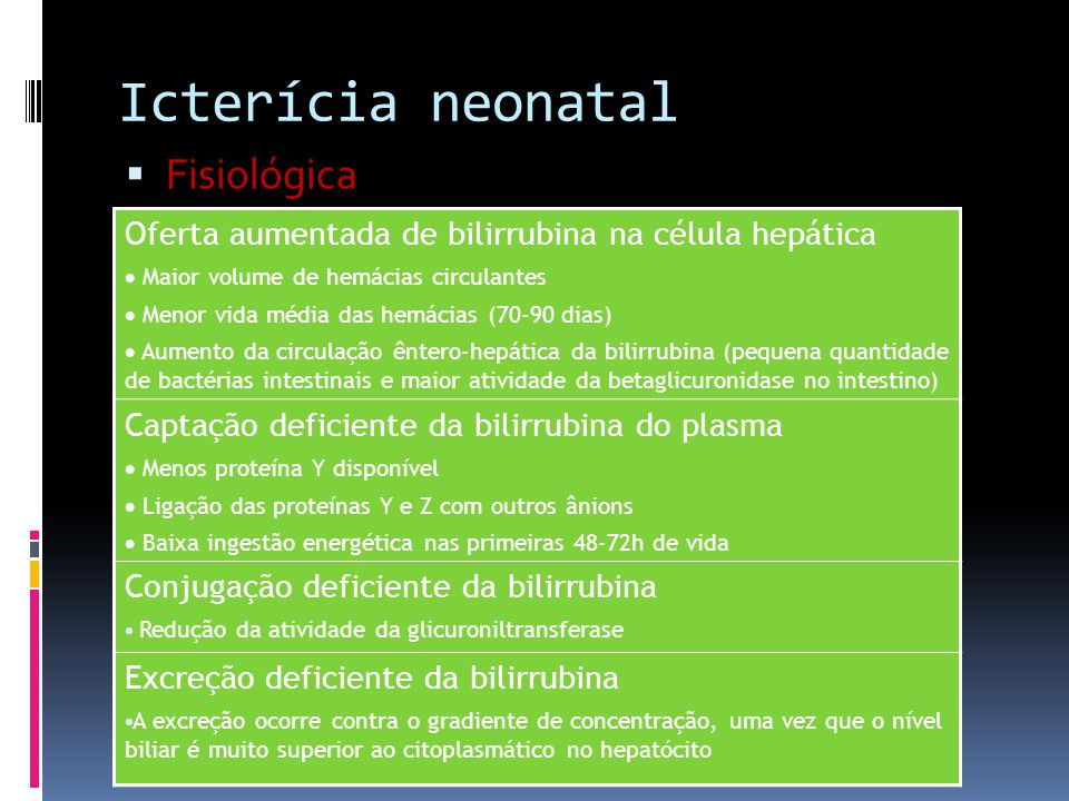Icterícia neonatal Fisiológica