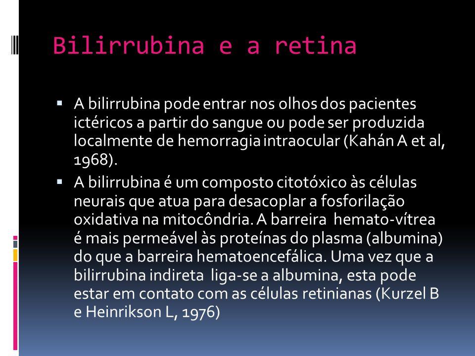 Bilirrubina e a retina