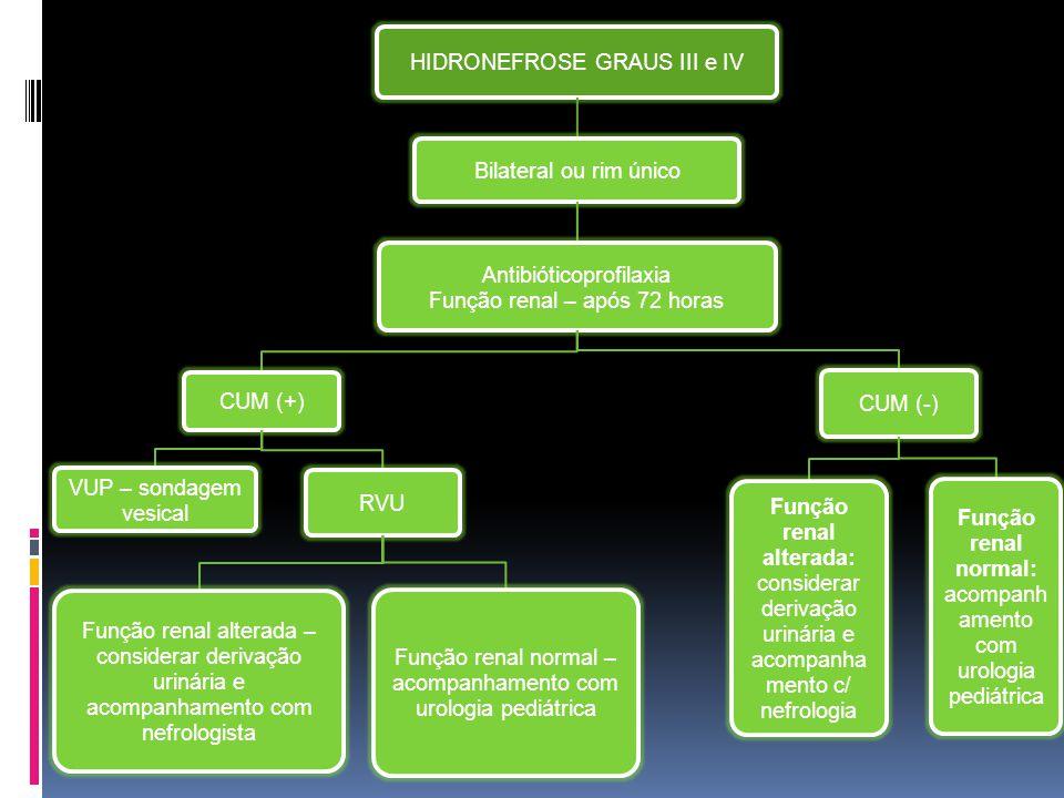 HIDRONEFROSE GRAUS III e IV Bilateral ou rim único