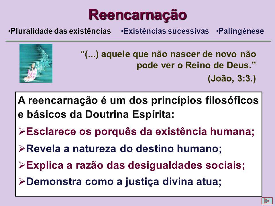 Reencarnação Pluralidade das existências. Existências sucessivas. Palingênese. (...) aquele que não nascer de novo não pode ver o Reino de Deus.