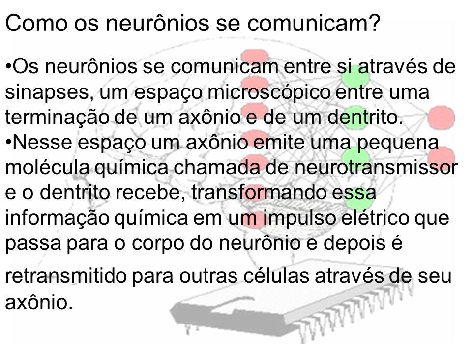 Como os neurônios se comunicam