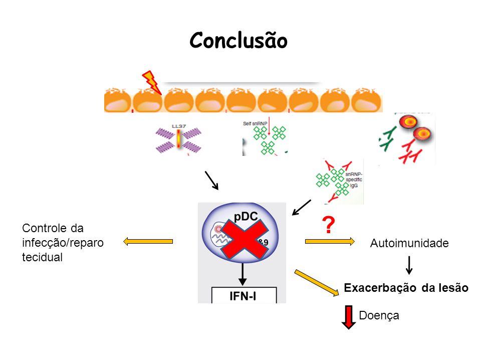 Conclusão Controle da infecção/reparo tecidual Autoimunidade