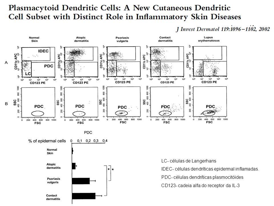 LC- células de Langerhans