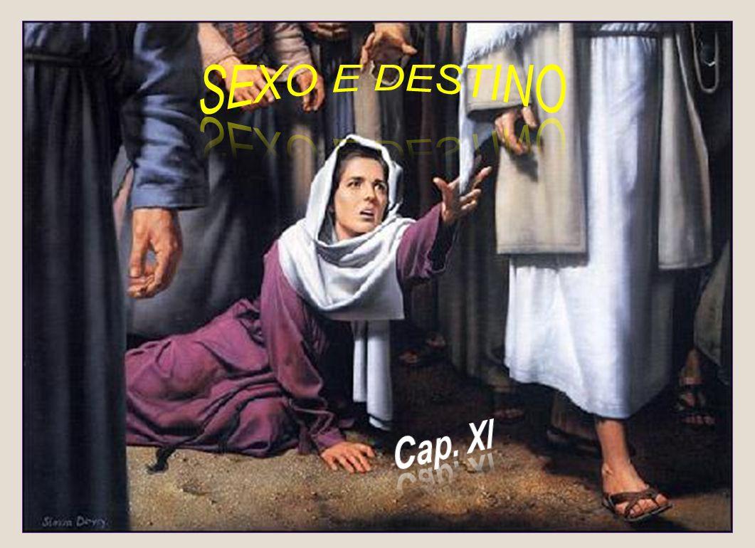 SEXO E DESTINO Cap. XI
