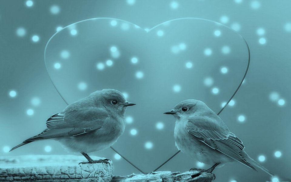 São assim porque apenas o canto e o som os deixam felizes na simplicidade da entoação...
