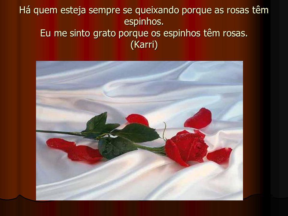 Há quem esteja sempre se queixando porque as rosas têm espinhos
