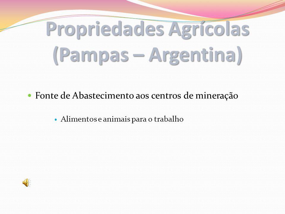 Propriedades Agrícolas (Pampas – Argentina)