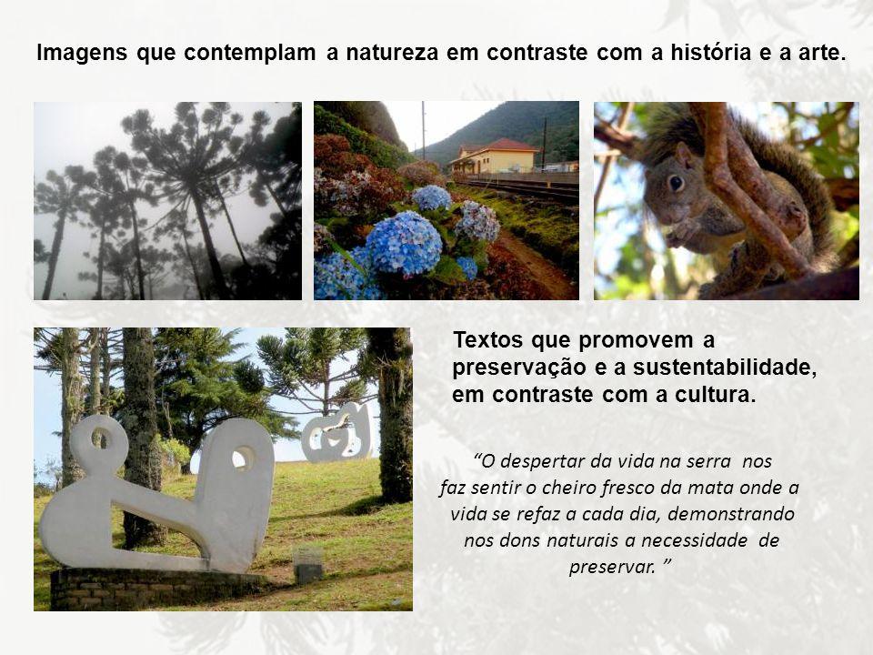 Imagens que contemplam a natureza em contraste com a história e a arte.
