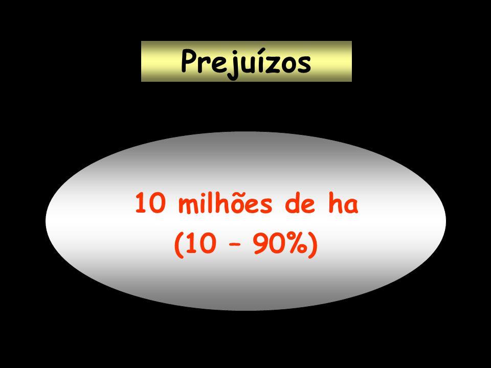 Prejuízos 10 milhões de ha (10 – 90%)