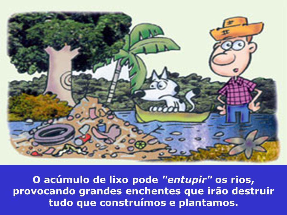 O acúmulo de lixo pode entupir os rios, provocando grandes enchentes que irão destruir tudo que construímos e plantamos.