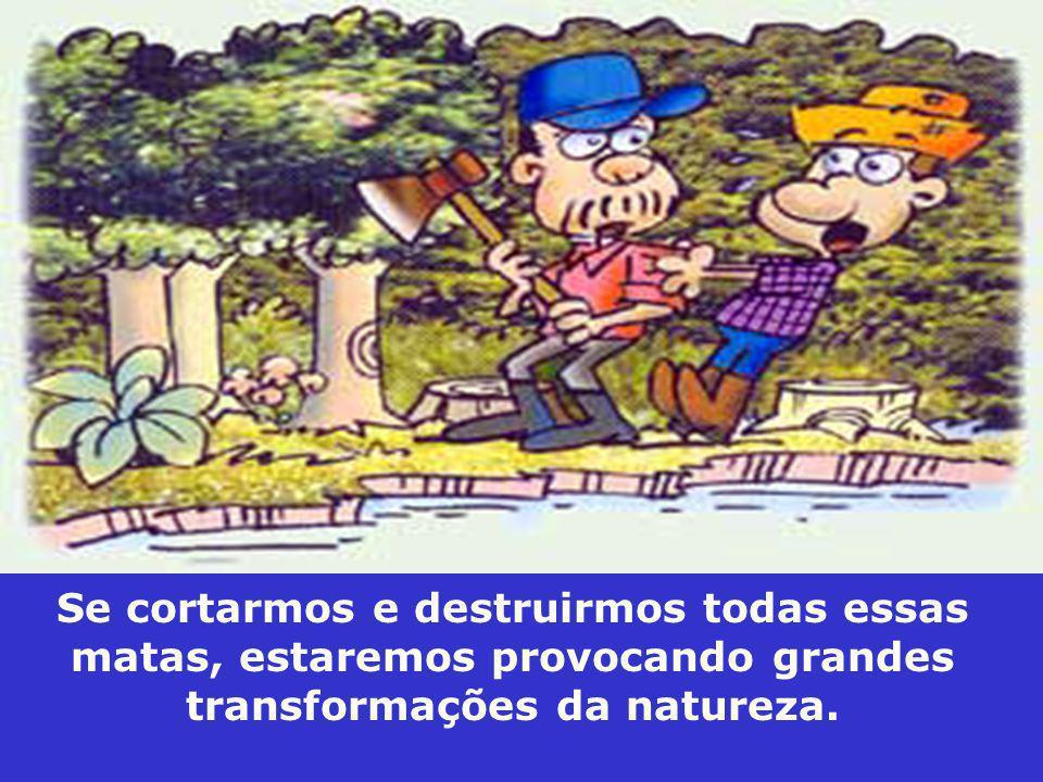 Se cortarmos e destruirmos todas essas matas, estaremos provocando grandes transformações da natureza.