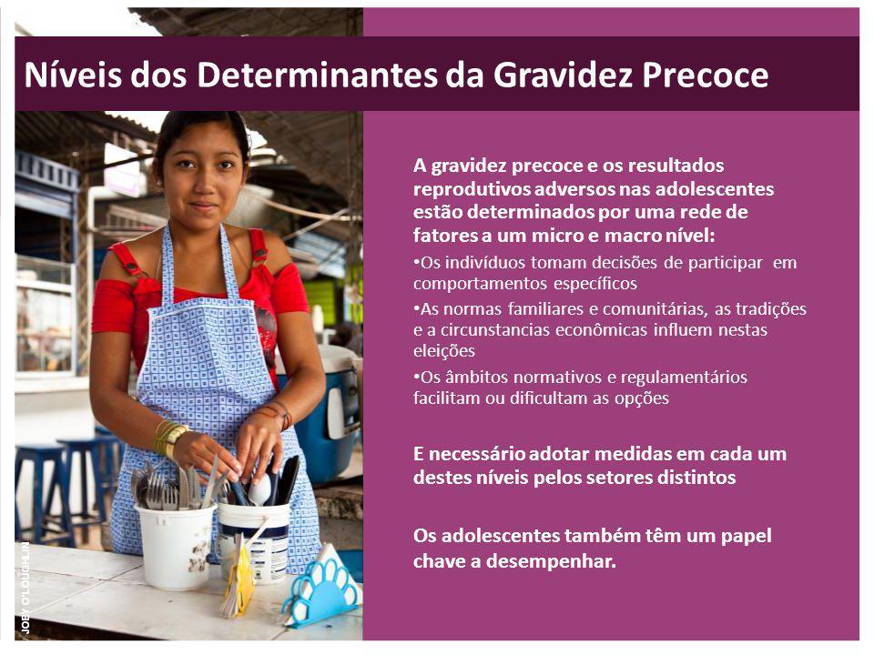 Níveis dos Determinantes da Gravidez Precoce