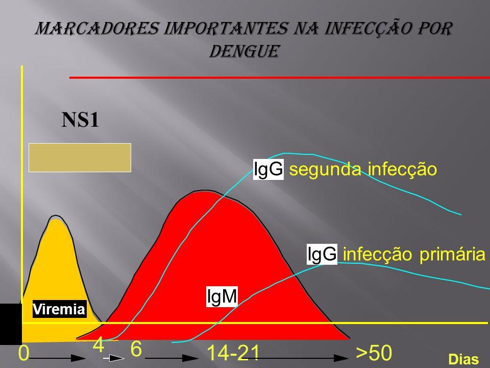 Marcadores importantes na infecção por dengue