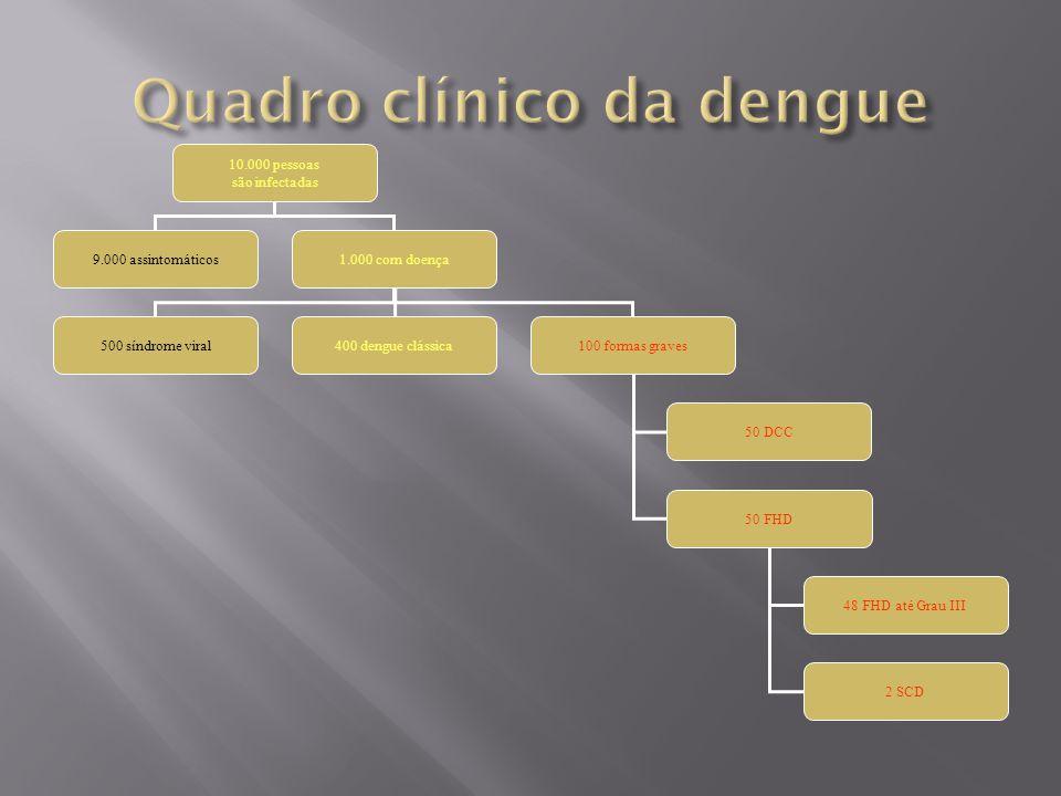 Quadro clínico da dengue