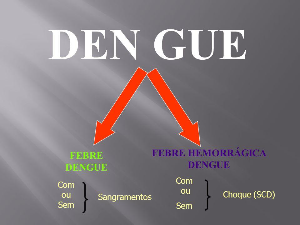 FEBRE HEMORRÁGICA DENGUE