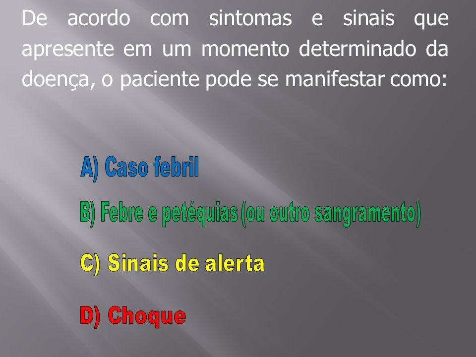 B) Febre e petéquias (ou outro sangramento)