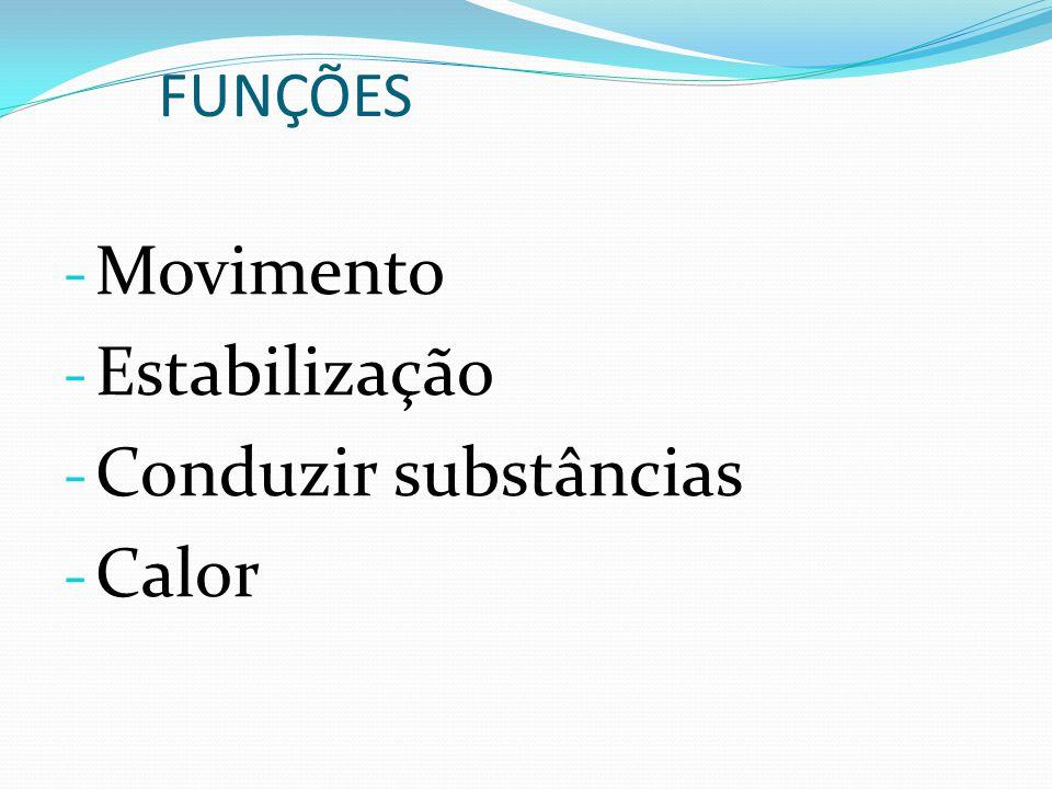 FUNÇÕES Movimento Estabilização Conduzir substâncias Calor