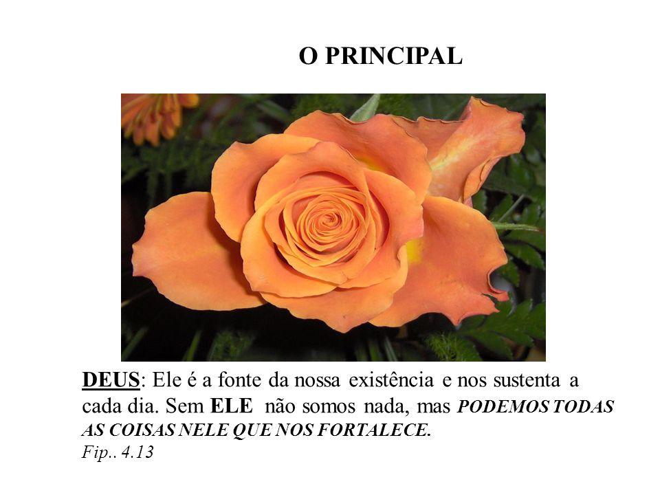 O PRINCIPAL