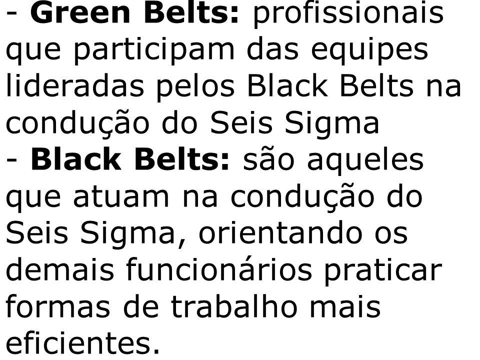 - Green Belts: profissionais que participam das equipes lideradas pelos Black Belts na condução do Seis Sigma - Black Belts: são aqueles que atuam na condução do Seis Sigma, orientando os demais funcionários praticar formas de trabalho mais eficientes.
