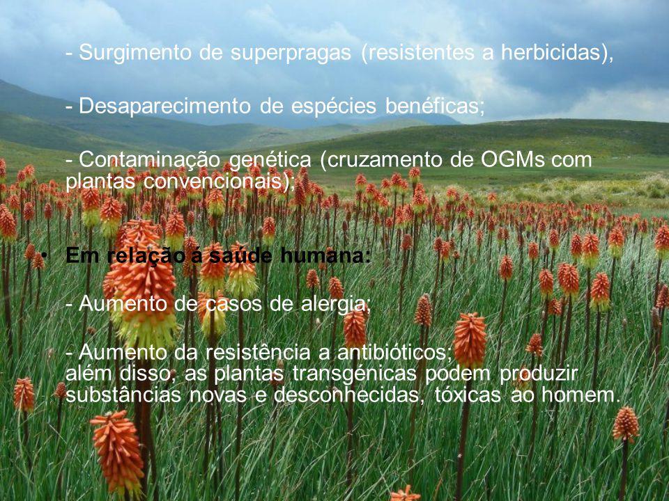 - Surgimento de superpragas (resistentes a herbicidas),