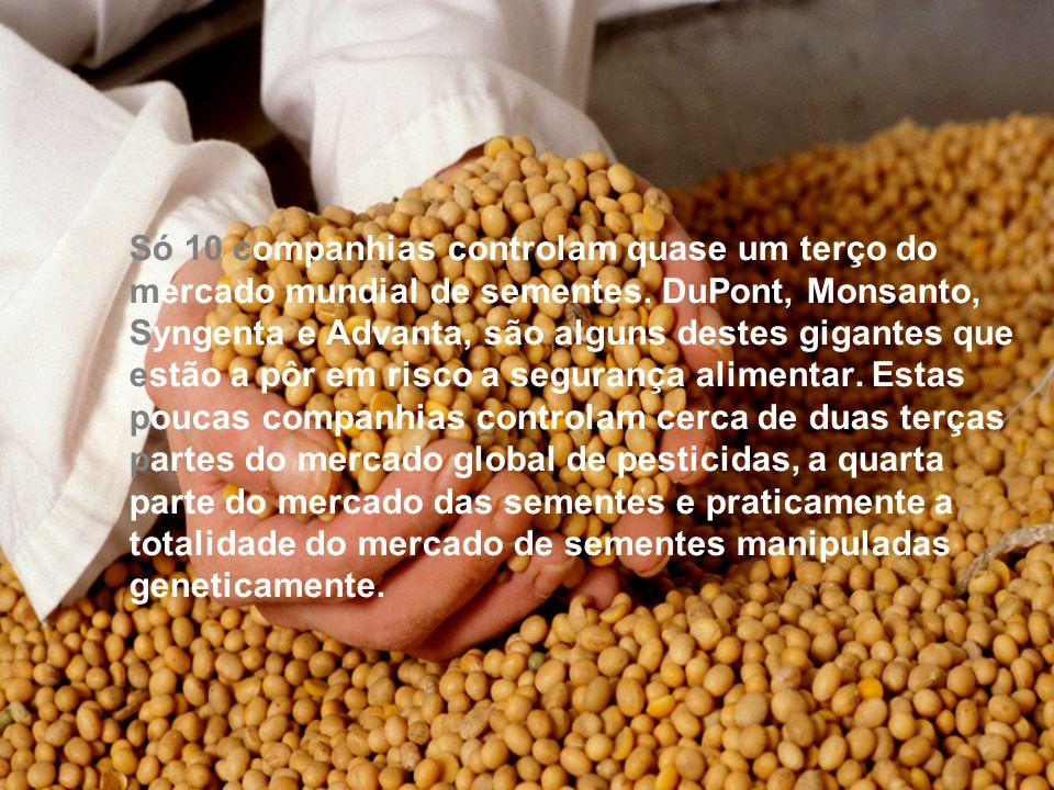 Só 10 companhias controlam quase um terço do mercado mundial de sementes.