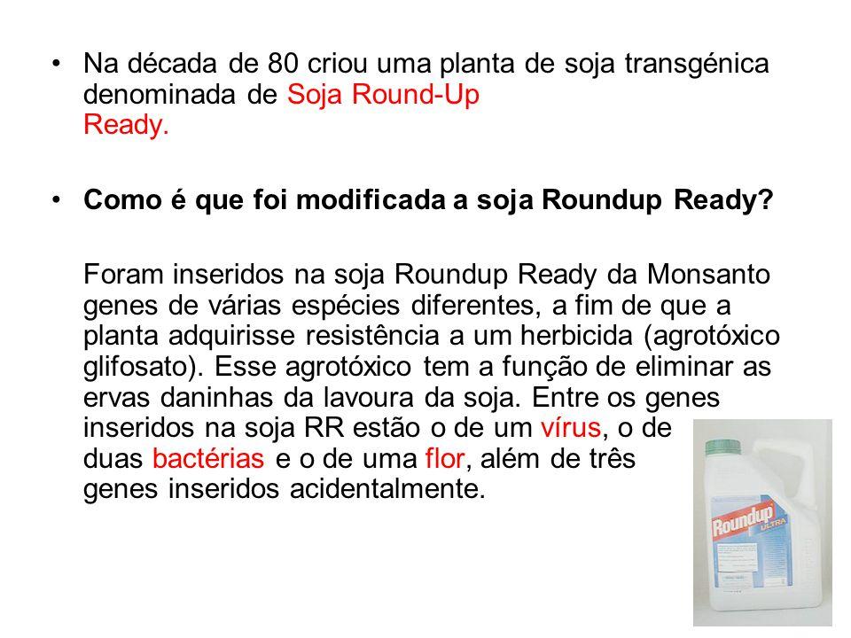 Na década de 80 criou uma planta de soja transgénica denominada de Soja Round-Up Ready.