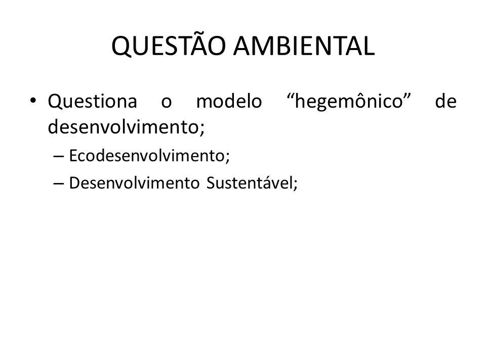 QUESTÃO AMBIENTAL Questiona o modelo hegemônico de desenvolvimento;