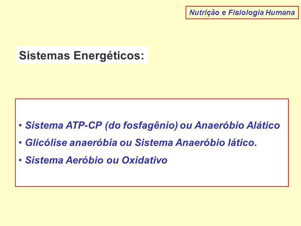 Sistemas Energéticos: