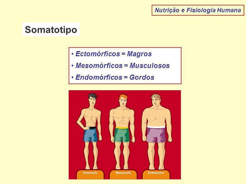 Somatotipo Ectomórficos = Magros Mesomórficos = Musculosos
