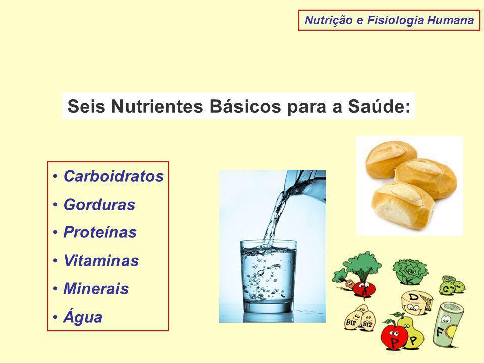 Seis Nutrientes Básicos para a Saúde: