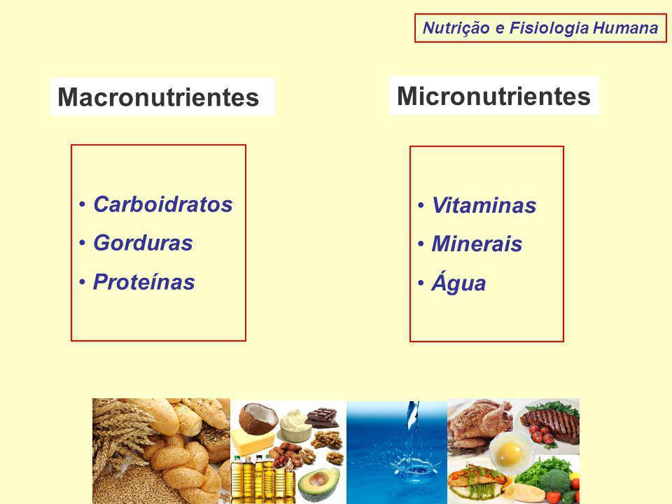 Macronutrientes Micronutrientes