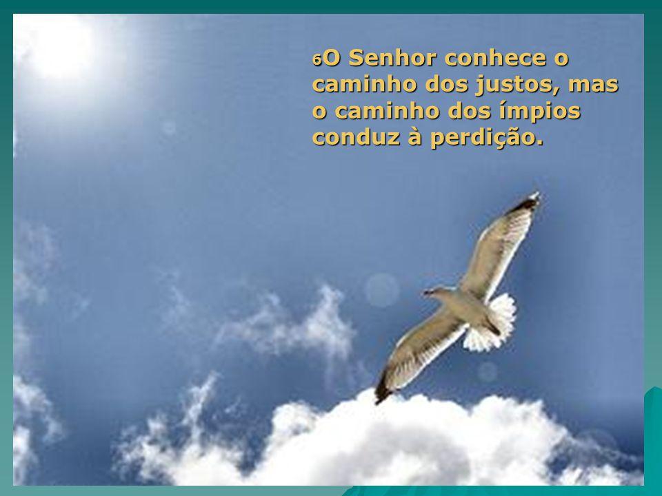 6O Senhor conhece o caminho dos justos, mas o caminho dos ímpios conduz à perdição.