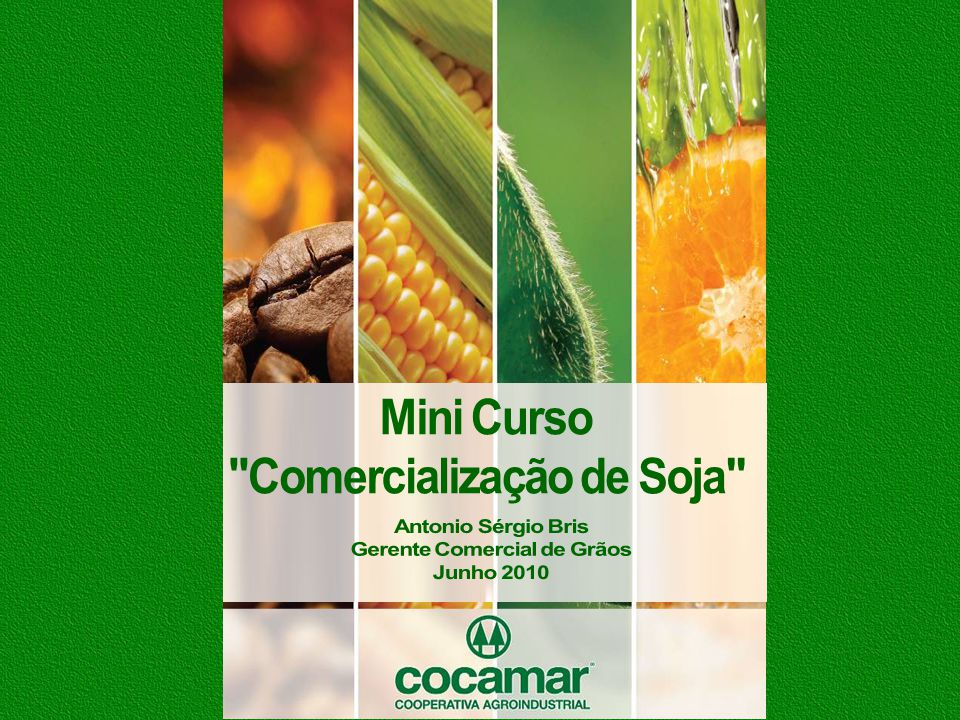 Comercialização de Soja Gerente Comercial de Grãos