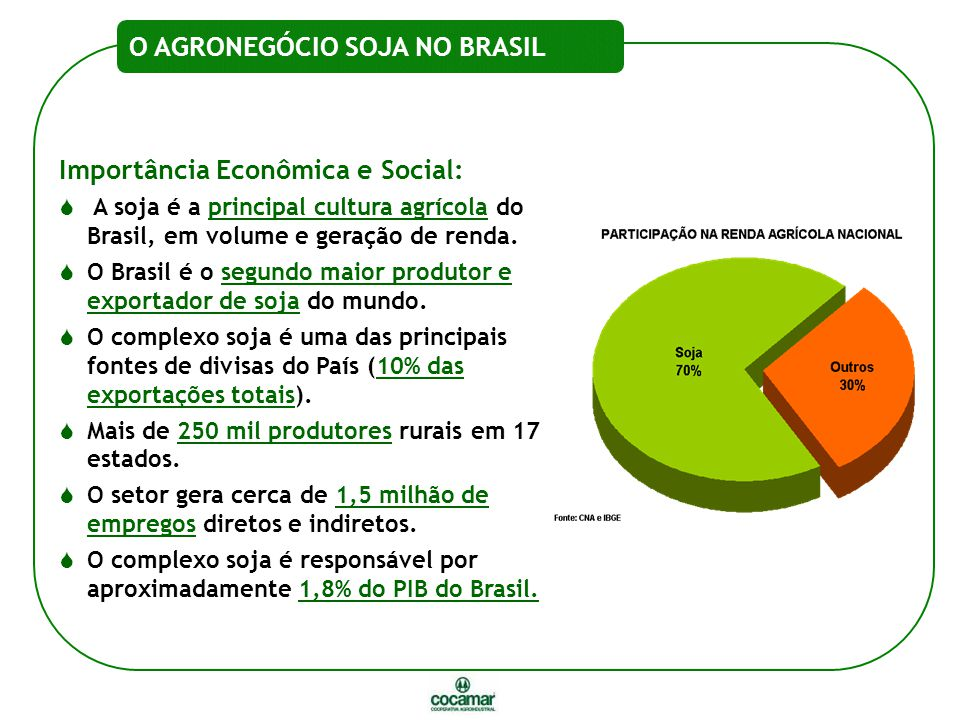 O AGRONEGÓCIO SOJA NO BRASIL