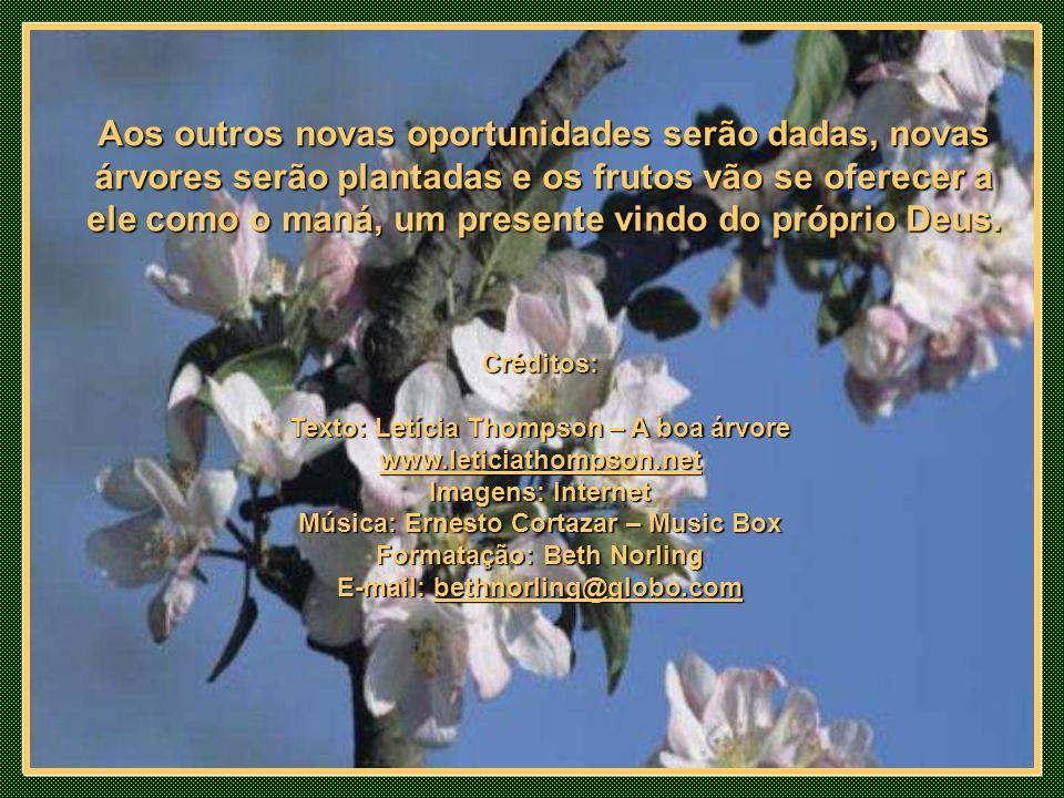 Aos outros novas oportunidades serão dadas, novas árvores serão plantadas e os frutos vão se oferecer a ele como o maná, um presente vindo do próprio Deus.
