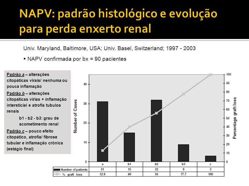 NAPV: padrão histológico e evolução para perda enxerto renal