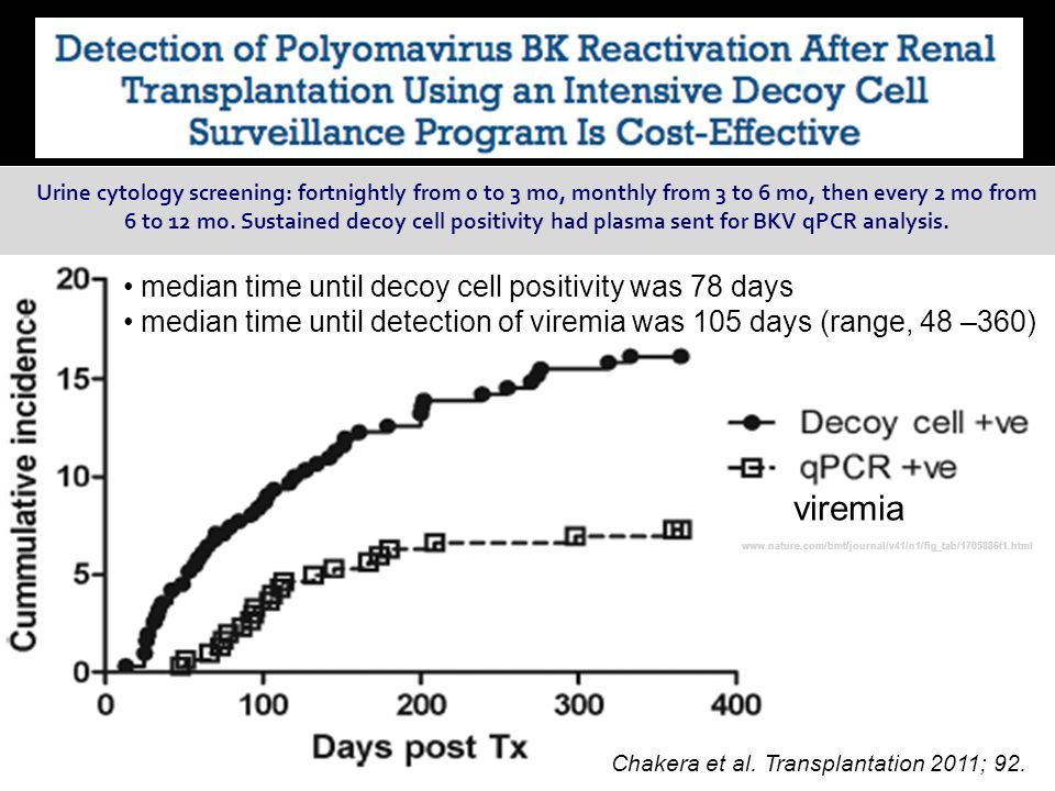 viremia median time until decoy cell positivity was 78 days