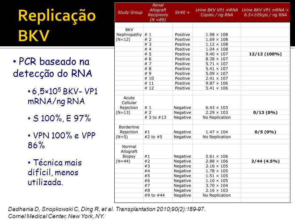 Replicação BKV PCR baseado na detecção do RNA