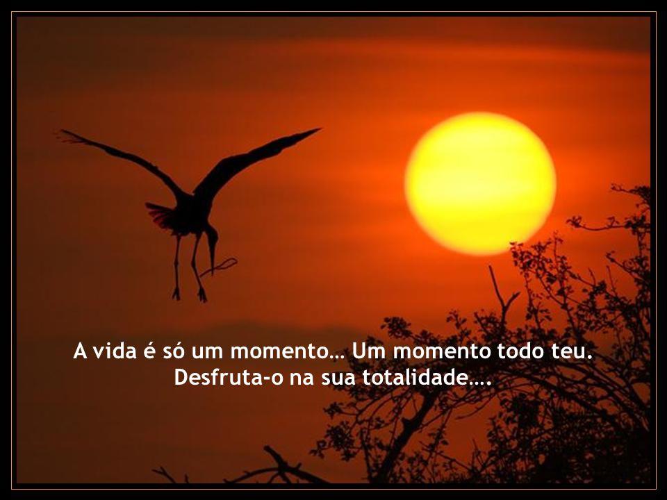 A vida é só um momento… Um momento todo teu.
