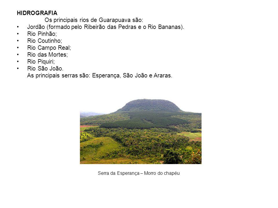 Os principais rios de Guarapuava são: