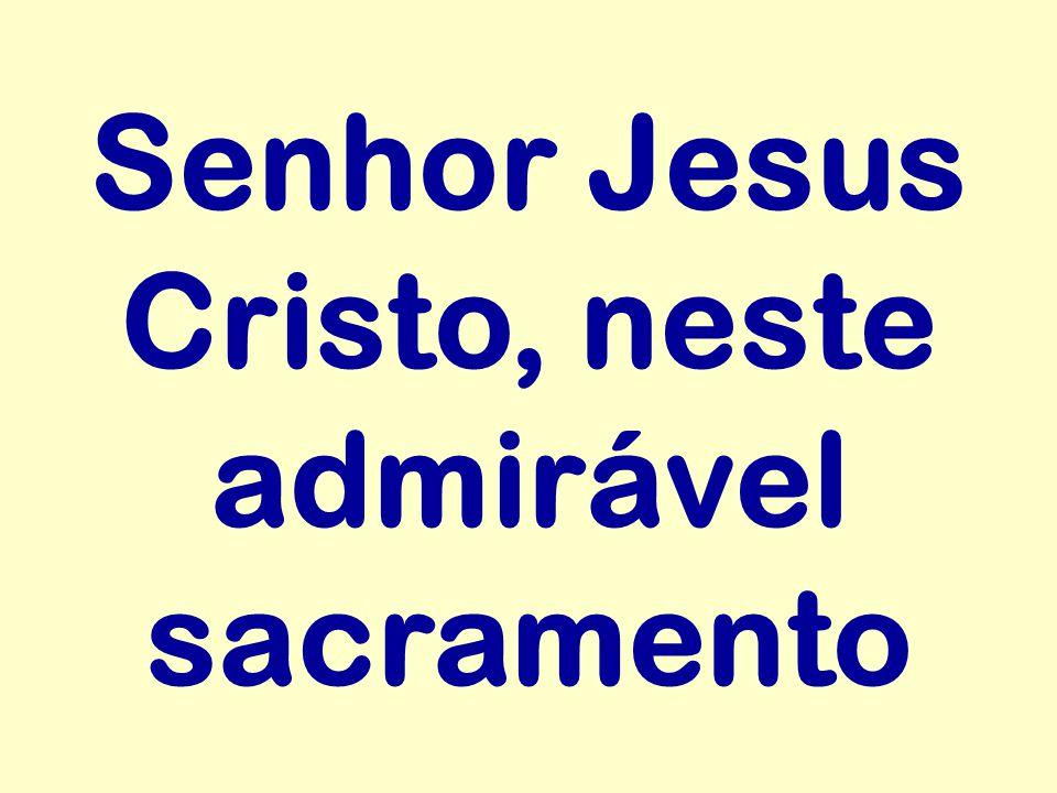 Senhor Jesus Cristo, neste admirável sacramento