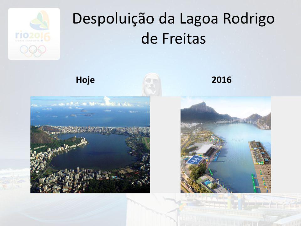Despoluição da Lagoa Rodrigo de Freitas